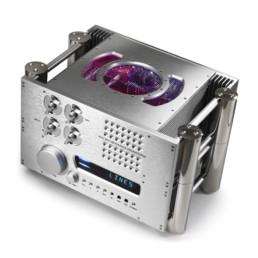 Chord Electronics CPA 8000
