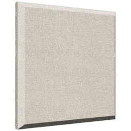 Auralex ProPanel Ceiling Panels