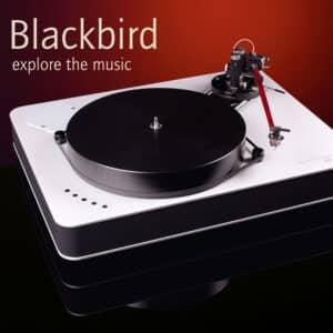 Dr. Feickert Blackbird
